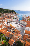 Piran and Tartini Square