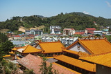 View of Brinchang Town and Chinese Temple  Cameron Highlands  Pahang  Malaysia  Asia