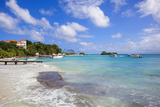 Cayo Levantado  Samana  Eastern Peninsula De Samana  Dominican Republic  West Indies  Caribbean