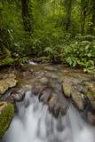 Waterfall  Semuc Champey  Guatemala  Central America