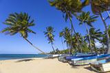 Beach at Las Terrenas  Samana Peninsula  Dominican Republic  West Indies  Caribbean