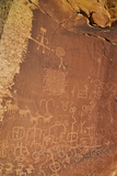 Petroglyphs  Vermilion Cliffs National Monument  Arizona  United States of America  North America