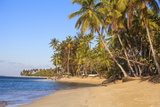 Beach at Las Terrenas  Samana Peninsula  Dominican Republic  West Indies  Caribbean
