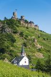 Castel Thurant Above Alken  Moselle Valley  Rhineland-Palatinate  Germany  Europe
