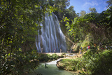 El Limon Waterfall  Eastern Peninsula De Samana  Dominican Republic  West Indies  Caribbean