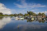 Laguna Del Cura  Punta Gorda  Cienfuegos  Cienfuegos Province  Cuba  West Indies  Caribbean