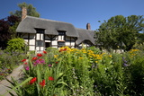 Anne Hathaway's Cottage  Stratford-Upon-Avon  Warwickshire  England  United Kingdom  Europe