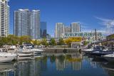 Toronto Waterfront  Toronto  Ontario  Canada  North America