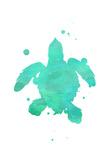 Turtle Splat