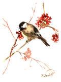 Chickadee 11