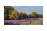 Plein Air Wild Lavender