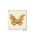 Luxe Butterfly