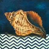 Elegance of the Sea I Reproduction d'art par Patricia Quintero-Pinto