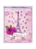 Pretty Paris Polaroid 1