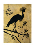 Golden Crowned Crane