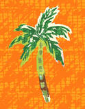 Cool Palm II