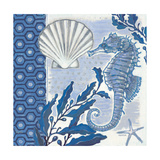Fanciful Seahorse 1