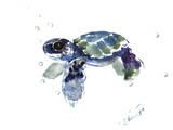 Baby Sea Turtle Reproduction d'art par Suren Nersisyan