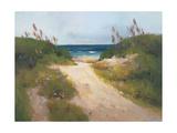 Beach Trail 1