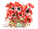 Anemones Red