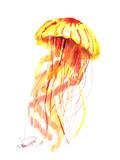 Jellyfish Fire Reproduction d'art par Suren Nersisyan