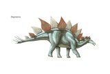 "Stegosaurus  ""Roof Lizard "" the Largest known Plated Dinosaur  Lived During Late Jurassic"