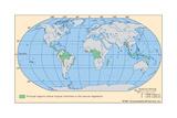 Worldwide Distribution of Tropical Rainforests