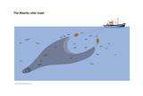 Atlantic Otter Trawl