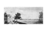 Plantation Near the Indian River in Delaware
