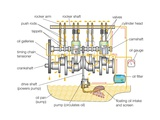 Typical Gasoline Engine Lubrication System