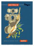 Australia - Koala Bears Reproduction d'art par Harry Rogers