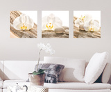 White Harmony Wall Decal