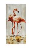 Flamingo V