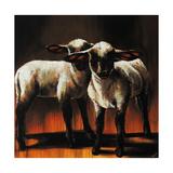 1 Sheep 2 Sheep