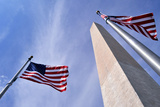 American Flags Surrounding the Washington Memorial on the National Mall in Washington Dc