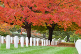Arlington National Cemetery near to Washington Dc  in Autumn
