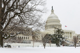 The Capitol in Snow - Washington Dc  United States of America