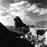 Statue of a Lion  Part of the Remains of the Tomb of Antiochus I  on the Summit of Nemrut Dagi