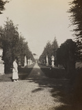 Pictures of War II: Red Cross in the Park of a Villa in Vicenza