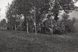 First World War: Soldiers and Tanks Hidden in the Bush in the Area of the Lower Piave