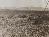 Campagna Di Guerra 1915-1916-1917-1918: View of Mount Ermada