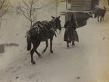 Soldier with Mule in the Valley Doblar During the First World War