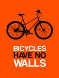 Bicycles Have No Walls 1