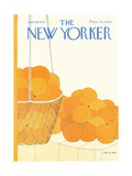 The New Yorker Cover - January 19  1976