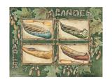 Maple Canoes