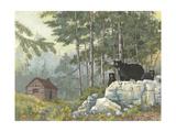 Bears Cabin