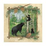 Black Bears II