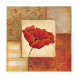 Orange Poppy II