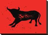 Pamplona Bull V