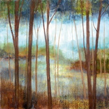 Soft Forest II